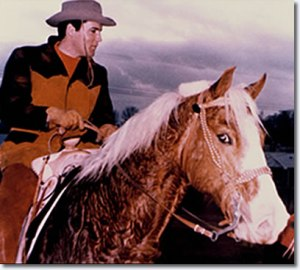 "Elvis Presley's favourite horse was the palomino Rising Sun. Priscilla Presley wrote: ""I remember one day I happened to look out of the window.  It was twilight.  The sky was aglow in misty blue and radiant pink.  There was Elvis walking Rising Sun, his Golden Palomino.  I saw them as silhouettes against the darkening sky.  Elvis was walking slowly, I could practically hear him breathe.  His breath was easy, his body relaxed.  At that moment I was convinced that my husband had actually found peace."""