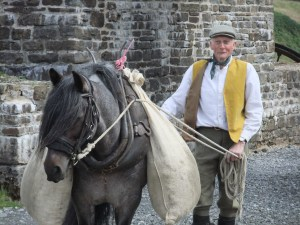 Charlie Parker of the Roandale Dales Pony Stud with Roandale Rock (Rocky).